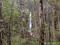 奥入瀬渓流 白布の滝