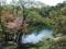 五色沼湖沼群 柳沼付近