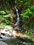 須賀川市 姫子の滝
