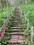 日本一のズリ山階段 77段目