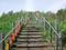 日本一のズリ山階段 555段目