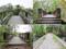 大沼国定公園 島巡りの径・袴腰橋・日の出橋など